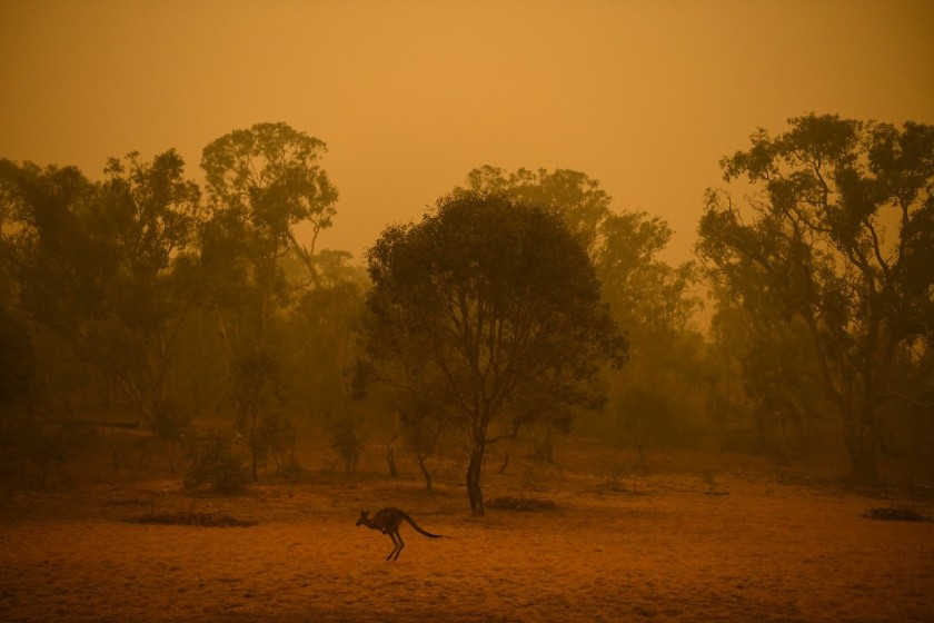 Incêndios assolam a Austrália no começo de 2020