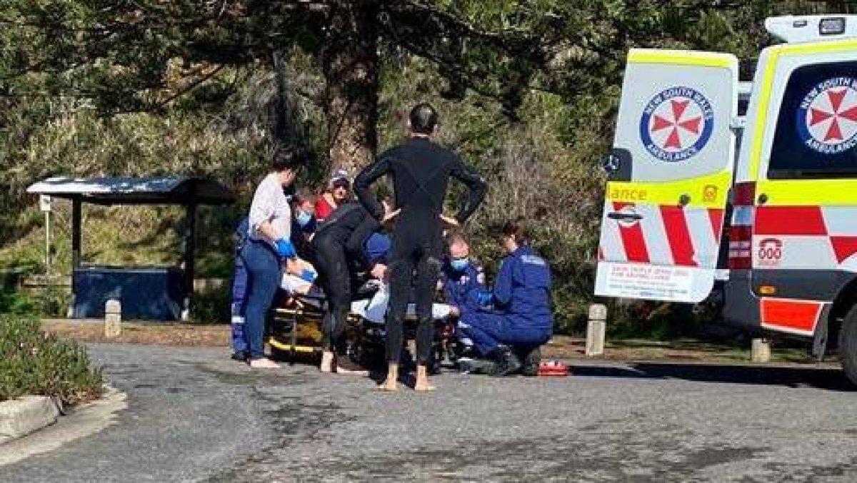 marido bate em tubarão e salva esposa na Austrália
