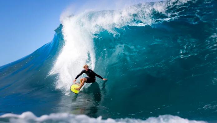 surfistas veganos