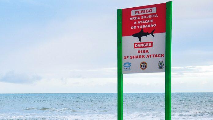 Ataque de tubarão recife
