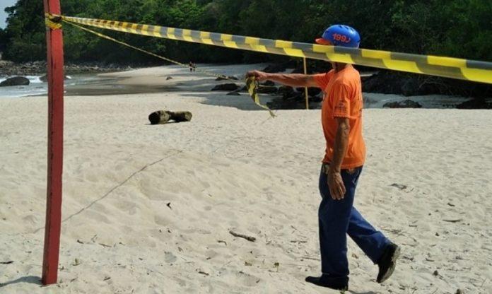 vazamento de óleo contamina natureza em Maresias